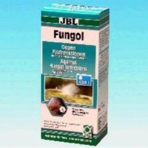 900541_פונגול נגד זיהומים פטרייתיים